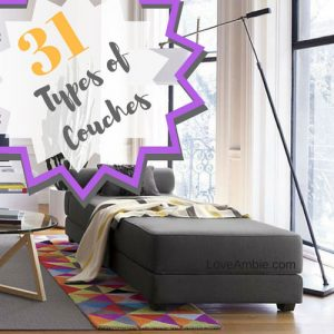31 Types of Couches and Sofas