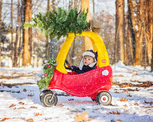 Toddler Christmas Photo - Christmas Tree Delivery