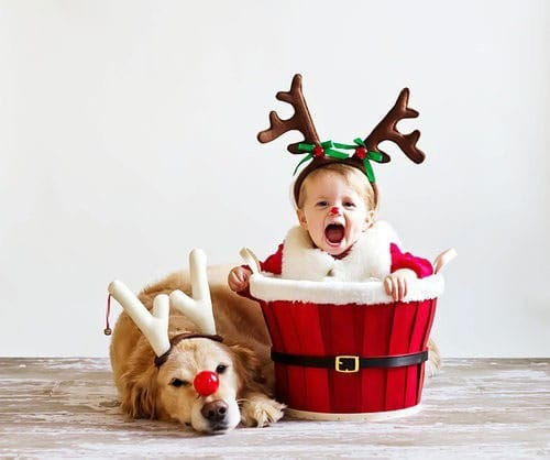 Toddler Christmas Picture Idea with Puppy