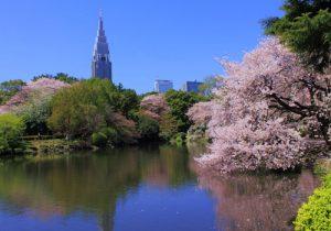 Best Garden in Tokyo – Shinjuku Gyoen Garden