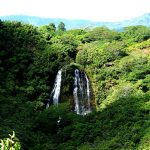 Hawaii Vacation - Opaekaa-Waterfall
