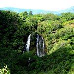 Hawaii Vacation - Opaekaa-Waterfall