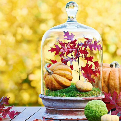 Thanksgiving Centerpiece Table Decorations -Glass Cloche