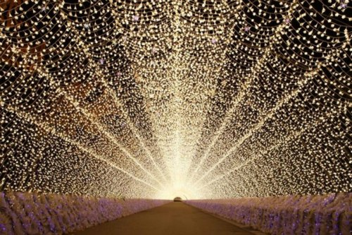 Breathtaking Christmas Light Tunnel