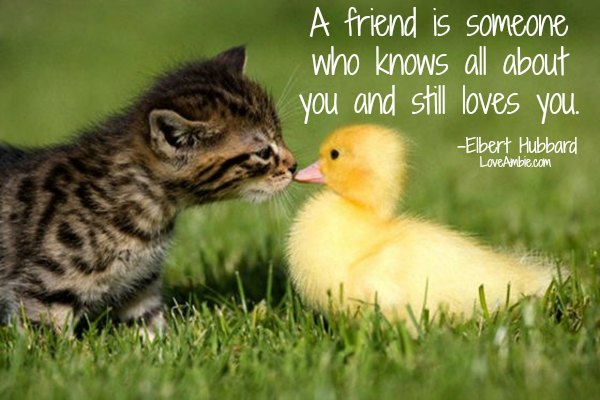 """A friend is someone who knows all about you and still loves you."" -Elbert Hubbard"