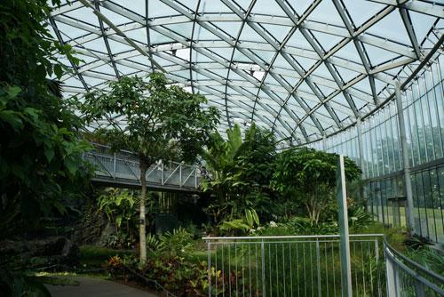 Greenhouse Shinjuku Gyoen Garden Tokyo