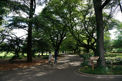 Shinjuku Gyoen Garden Tokyo - Best Gardens in Tokyo