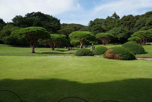 Shinjuku Gyoen Garden Tokyo - English Garden