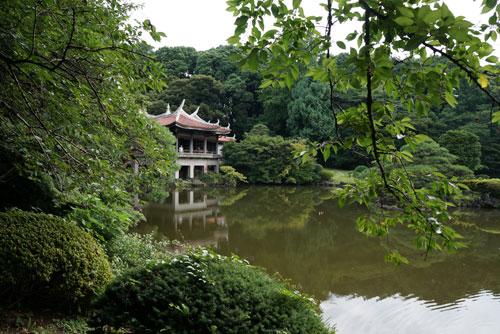 Shinjuku Gyoen Garden Tokyo - Japanese Garden