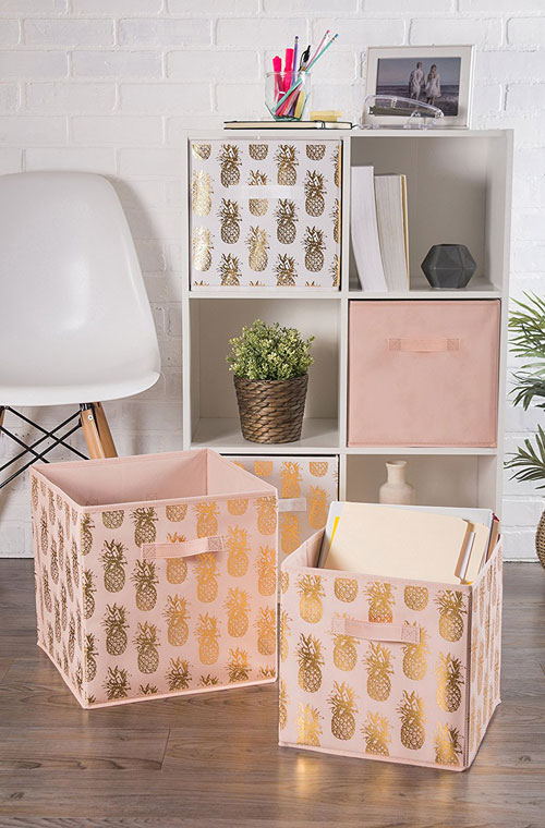 Pineapple Storage Bins