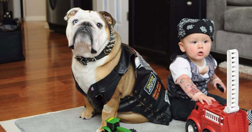 Biker and Baby Halloween Costume - Dog Costume Ideas - Matching Dog and Owner Halloween Costumes