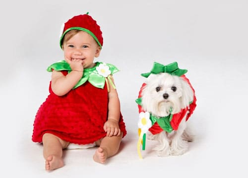 Puppy costume for toddle - Strawberry Dog Costume - matching dog and owner halloween costumes - Dog costumes