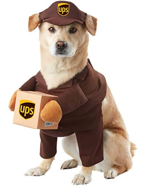 UPS Dog Costume - Funny Dog Halloween Costumes - Dog Costume Ideas
