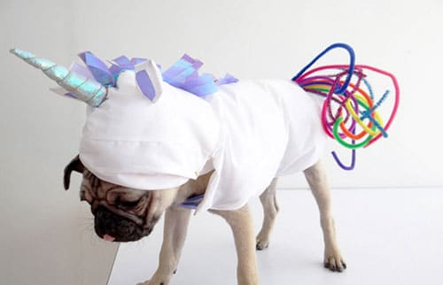 Unicorn Dog Costume - Easy Dog Costumes - Dog Costume Ideas
