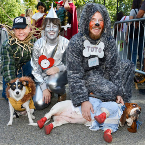 Wizard of Oz Halloween Costume - DIY Dog Costume - Halloween Dog Costume Ideas